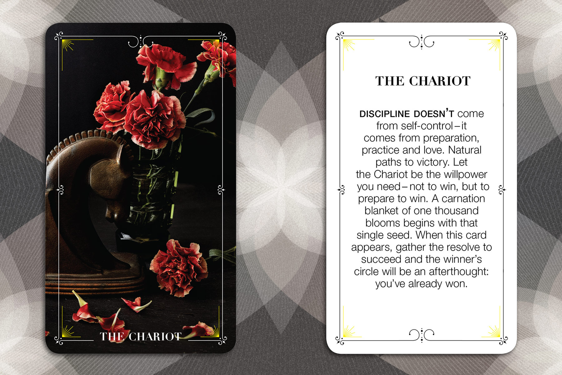 009_BloomTarot_TheChariot
