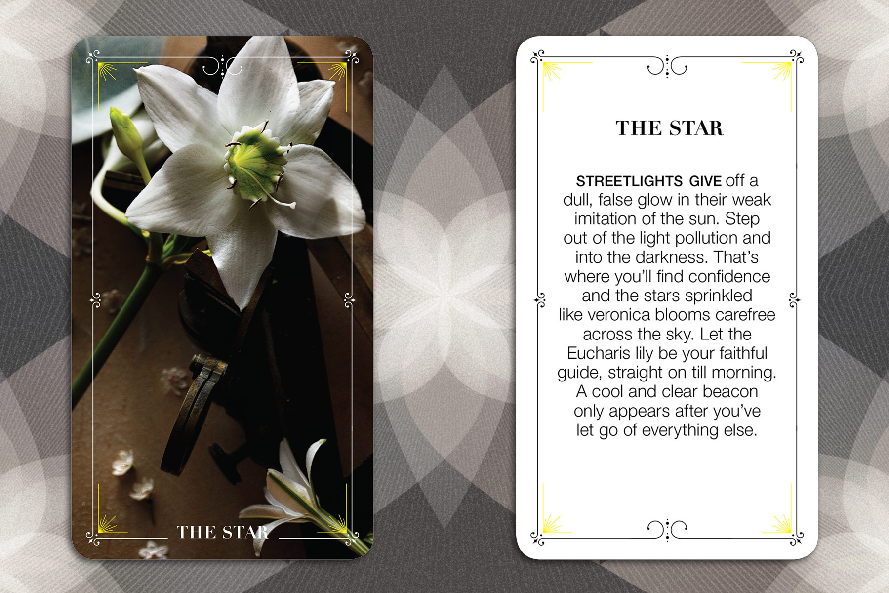 011_BloomTarot_TheStar