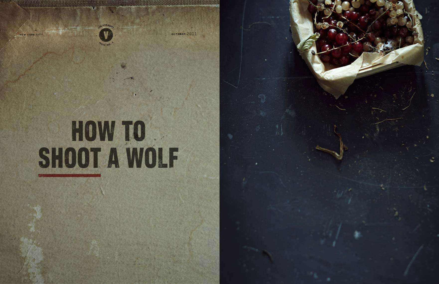 HOW TO SHOOT A WOLF - The Voracity by Anna Williams